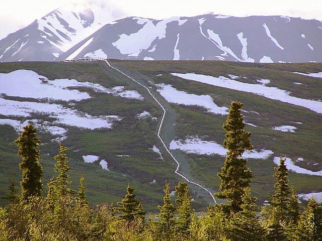 Trans-Alaska-Oil-Pipeline. (Foto: © Jan Arkesteijn / Wikimedia.Commons CC BY-SA 3.0)